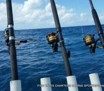 REEF FISHING WITH THE HUMP BACKS