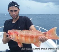 Coral trout Bluewater fishing
