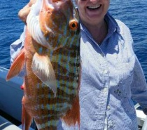 BLUEWATER (REEF) FISHING FROM CAIRNS