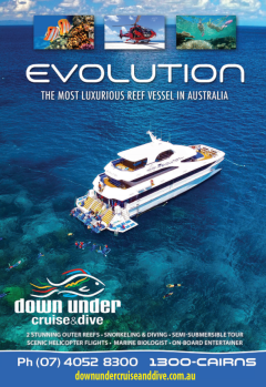 Evolution - Snorkel & Dive