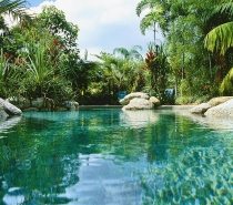 Stunning swimming pools in a tranquil garden setting