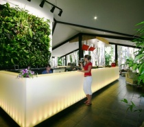Vertical garden walls compliment the reception at Kewarra Beach Resort