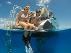 Top reviews secure award for Passions Great Barrier Reef catamaran