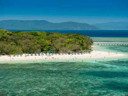 Cairns Reef Half Day Tours