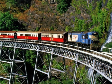 1 Day Rainforest and Kuranda Tour