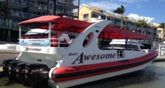 Cairns Adventure Cruises | That's Awesome